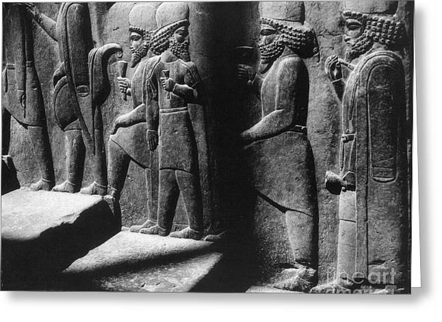 Tribute Bearers, Persepolis, Iran Greeting Card by Science Source