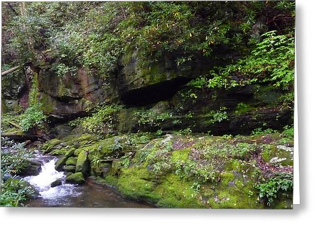 Trickle Of Green Greeting Card by Michael Carrothers
