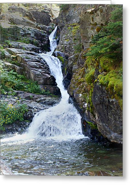 Tricky Falls Greeting Card by Marty Koch