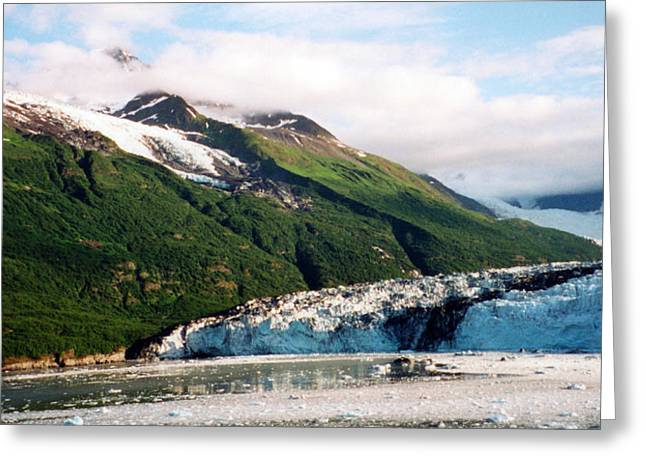 Trip To Glacier Bay Greeting Card