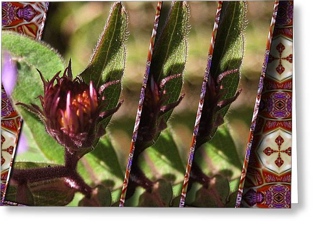 Greeting Card featuring the photograph Triple Buds by Mario Carini