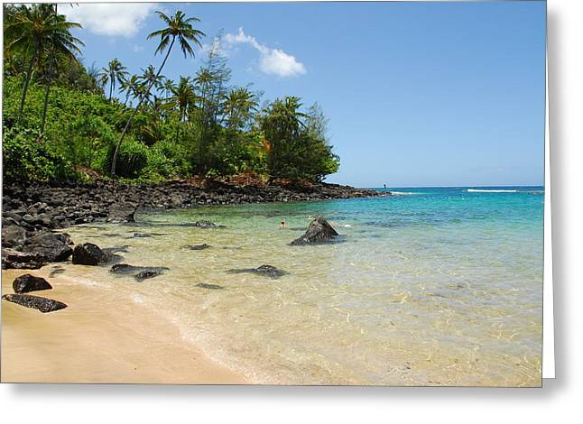 Greeting Card featuring the photograph Tropical Paradise by Lynn Bauer