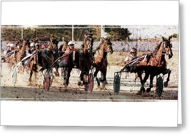 Greeting Card featuring the photograph Trotting 3 by Pedro Cardona