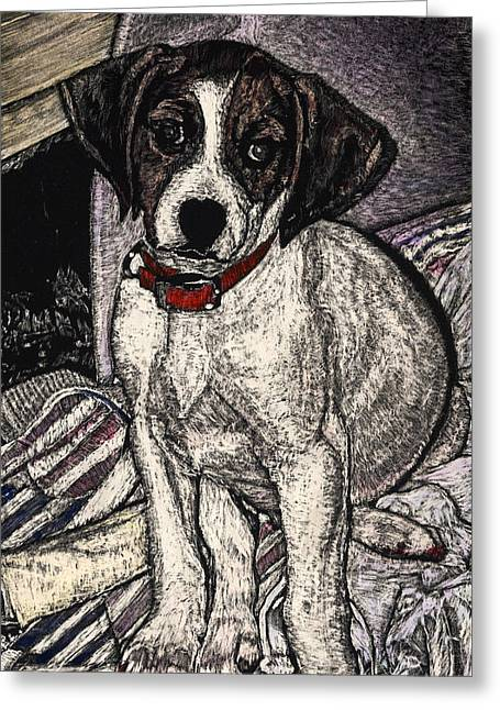 Trudy May The Puppy Greeting Card by Robert Goudreau
