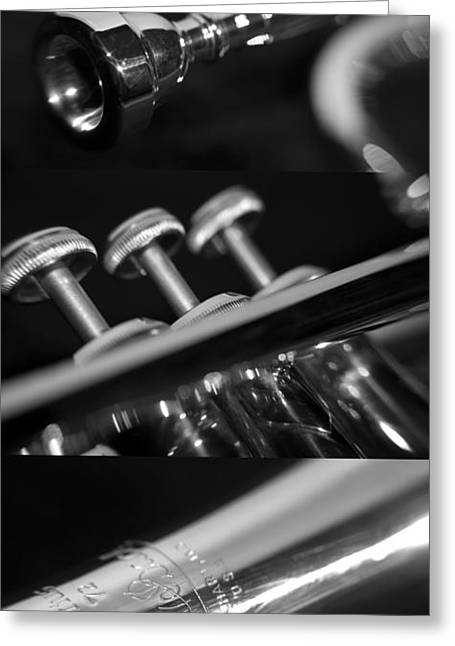 Trumpet II Greeting Card by Paul Sisco