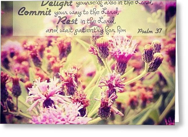 Trust, Delight, Commit, Rest. Simple As Greeting Card