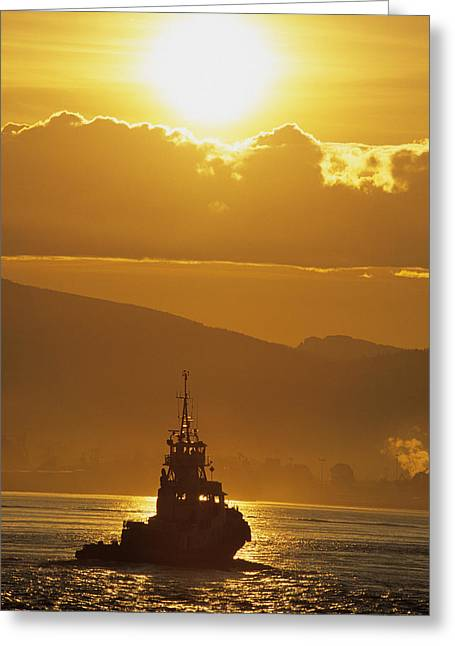Tugboat At Sunrise, Burrard Inlet Greeting Card by Ron Watts