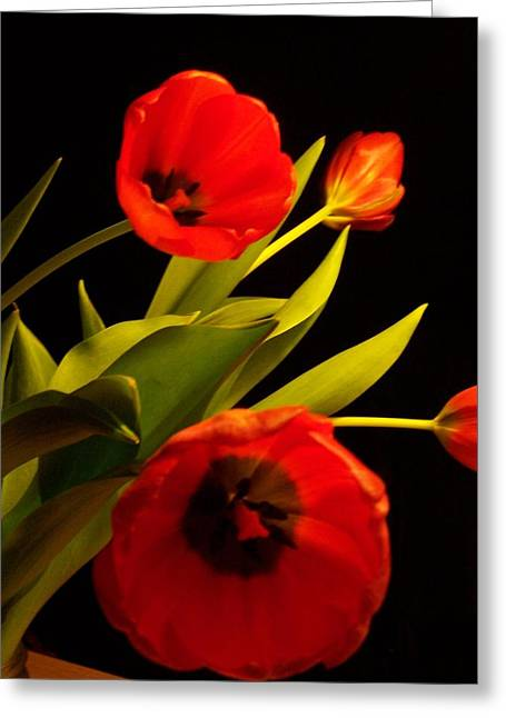 Tulip Arrangement 1 Greeting Card by Peter Mooyman