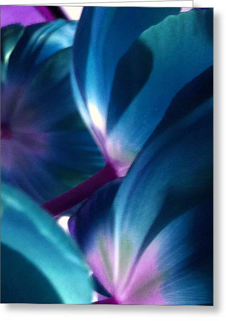 Tulip Blues Greeting Card