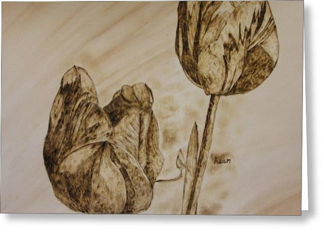 Tulips In Sepia Greeting Card by Maureen Hargrove