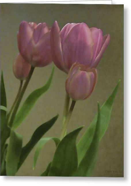 Tulips Reflections Greeting Card by Debra     Vatalaro