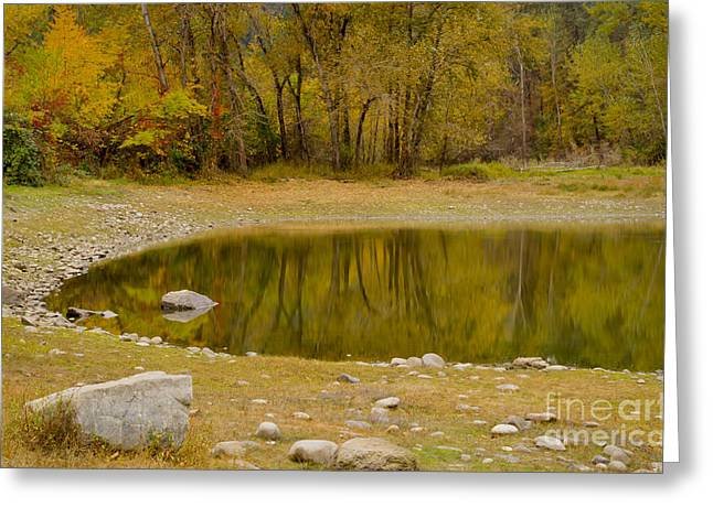 Tunnel Pond Greeting Card