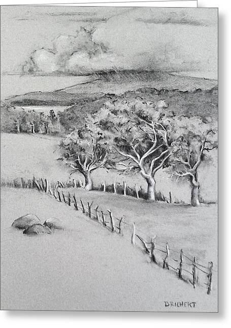 Turpentine Trees And The Big Island Greeting Card by Barbara Richert