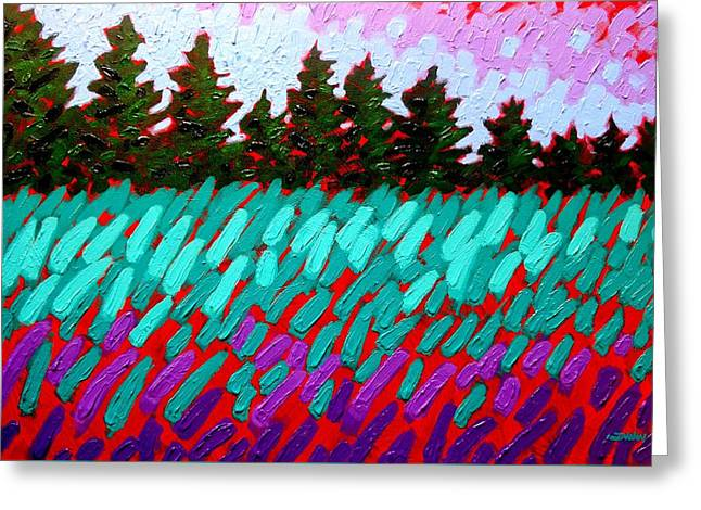 Turquoise Field Greeting Card