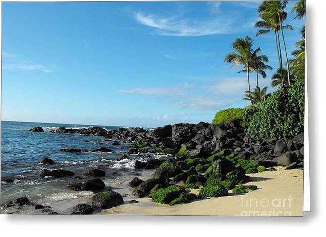 Turtle Beach Oahu Hawaii Greeting Card