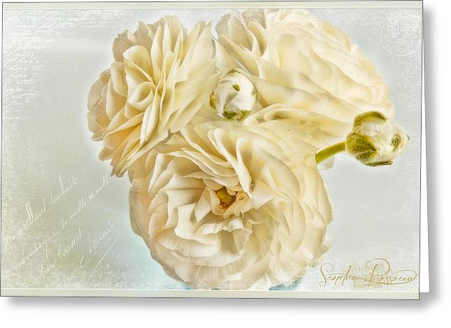 Tutus And Petticoats Greeting Card by Sandra Rossouw