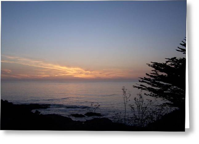 Twilight Coastline Greeting Card by Christine Drake