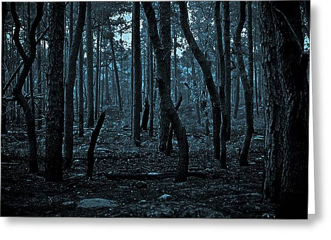 Greeting Card featuring the photograph Twilight In The Smouldering Forest by DigiArt Diaries by Vicky B Fuller
