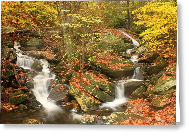 Twin Cascades Along Westfield River Greeting Card by John Burk