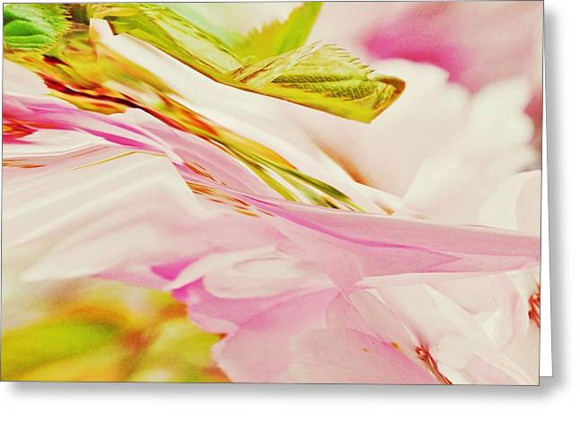 Twisted Blossom Greeting Card by Sharon Lisa Clarke