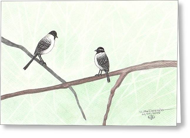 Two Chickadees Greeting Card by William Deering