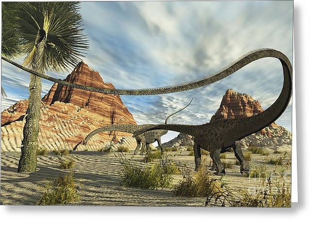 Two Diplodocus Dinosaurs Search Greeting Card by Corey Ford
