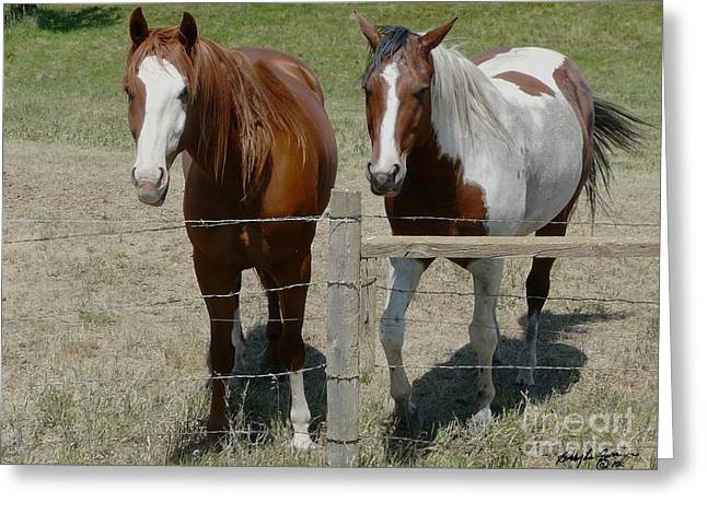Two Friends Greeting Card by Bobbylee Farrier