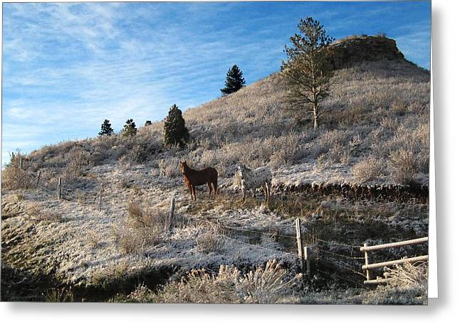 Two Horses Greeting Card by Ric Soulen