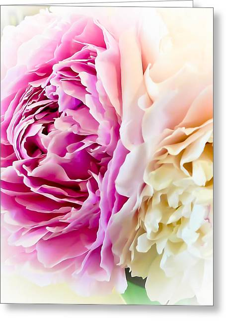 Greeting Card featuring the photograph Two Peonies by Ronda Broatch