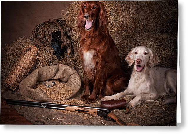 Two Setters With The Gun... Greeting Card