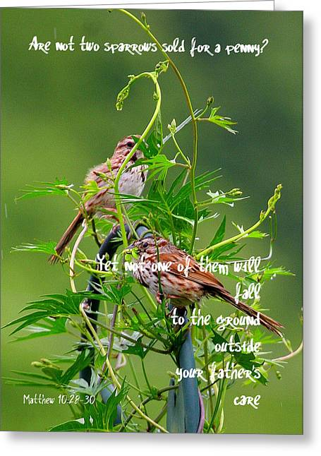 Two Sparrows For A Penny Greeting Card by Paula Tohline Calhoun