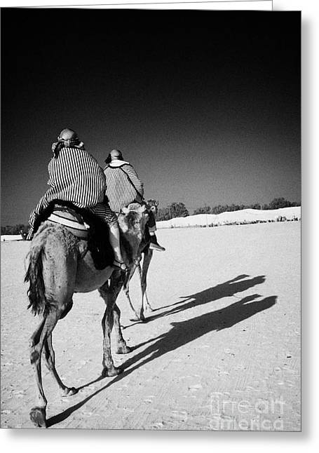 two tourists on camels return to base in the sahara desert at Douz Tunisia Greeting Card by Joe Fox