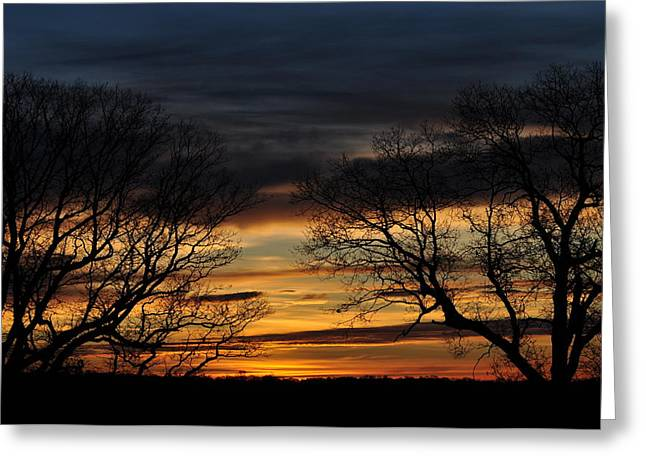 Two Tree Sunrise Greeting Card by Peter  McIntosh