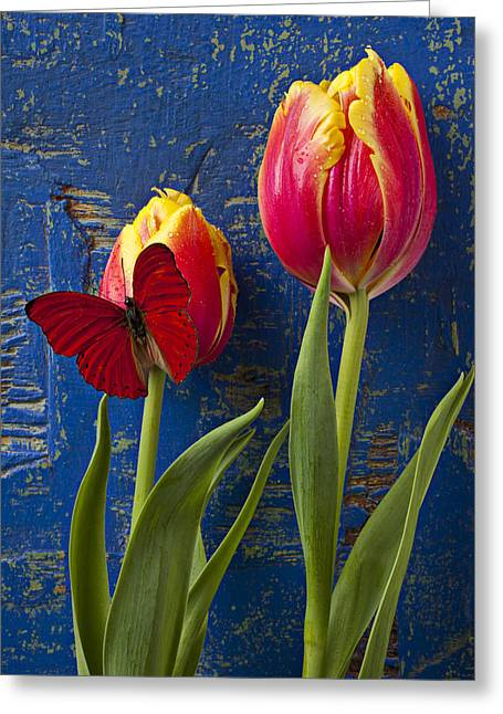 Two Tulips With Red Butterfly Greeting Card by Garry Gay