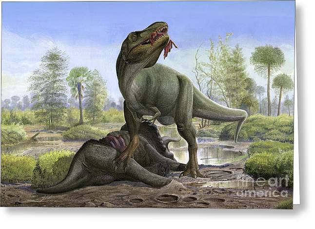 Tyrannosaurus Rex Eats The Carrion Greeting Card