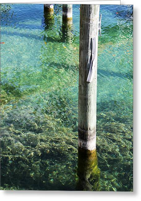 Under The Docks Greeting Card by Sheryl Burns