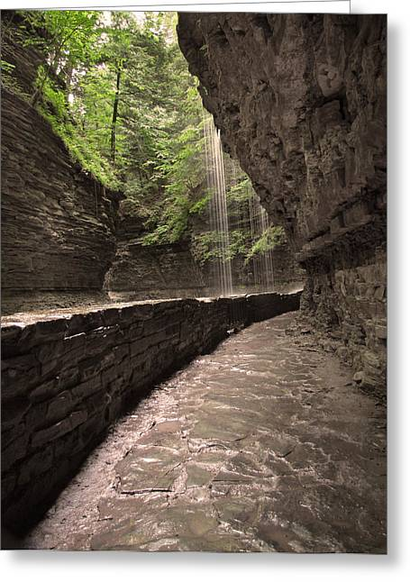 Under The Falls Greeting Card by Cindy Haggerty