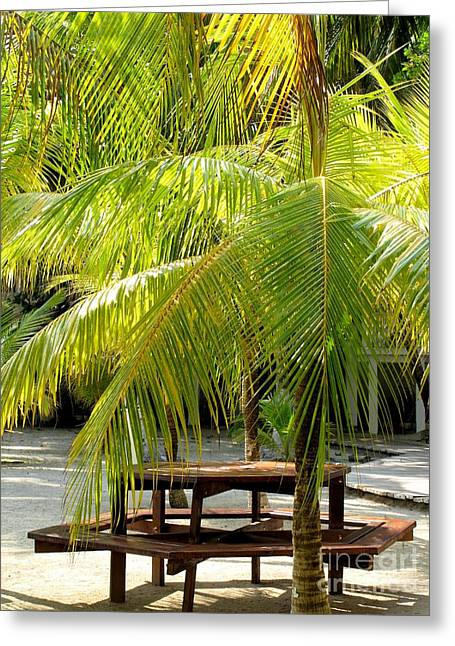 Under The Palm Tree Greeting Card