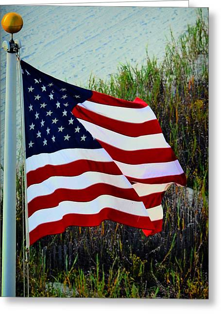 United States Of America Greeting Card by Gerlinde Keating - Galleria GK Keating Associates Inc