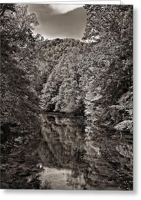 Up The Lazy River Monochrome Greeting Card by Steve Harrington