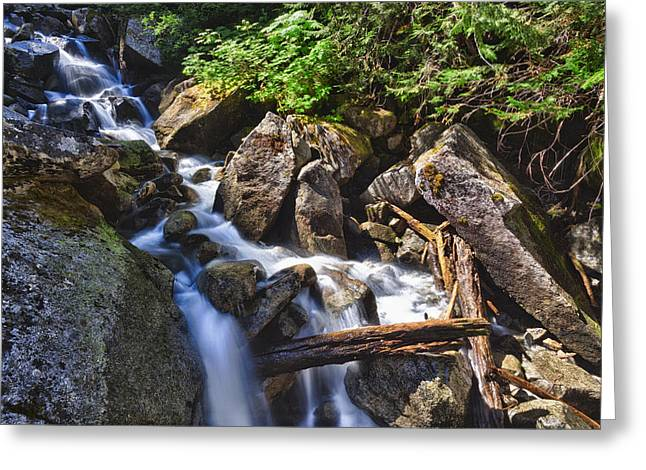Upper Cascades Of Malchite Creek Greeting Card by A A