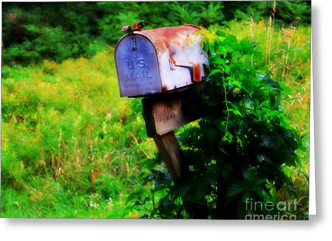 U.s. Mail 2 Greeting Card by Perry Webster