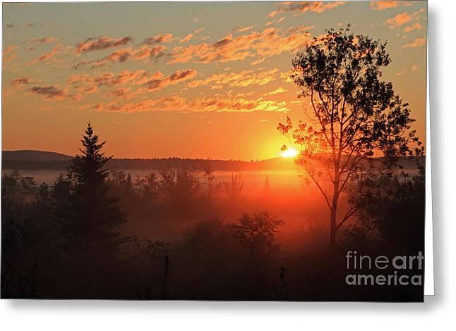 Valley Fog And Rising Sun Greeting Card by Lloyd Alexander
