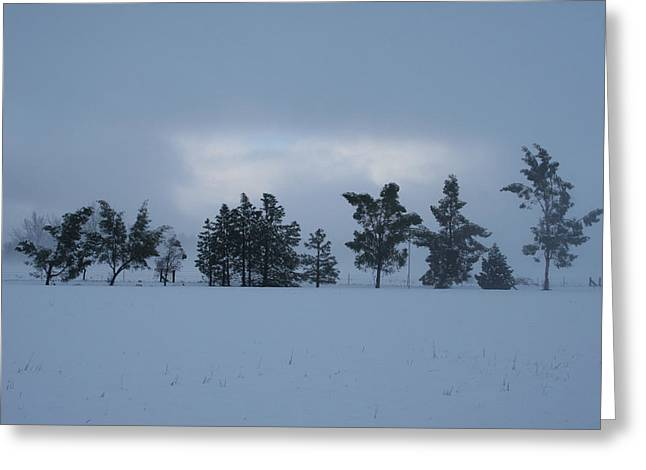 Greeting Card featuring the photograph Valley Sentinels by Holly Ethan