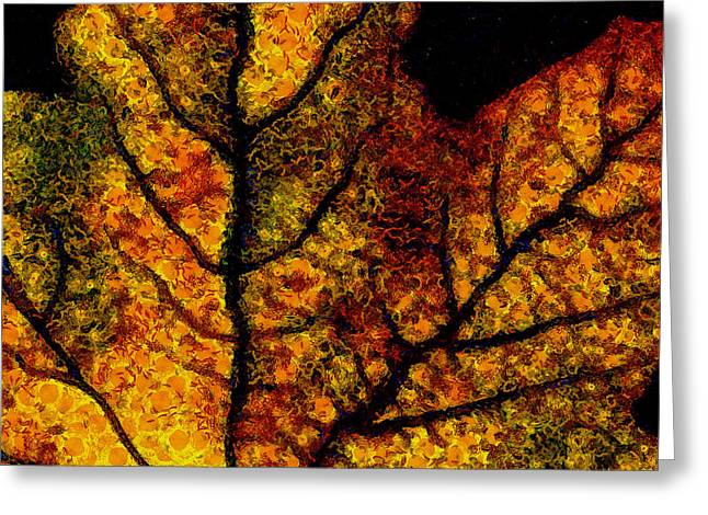 Vangogh's Autumn Maple Leaf - Square Greeting Card by Wingsdomain Art and Photography