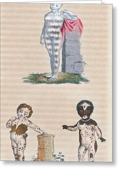 Varieties In The Human Species, Artwork Greeting Card by General Research Division New York Public Library