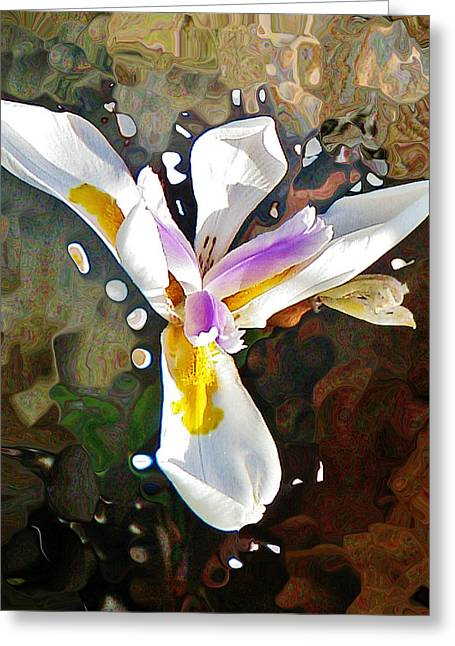 Venice Iris Greeting Card