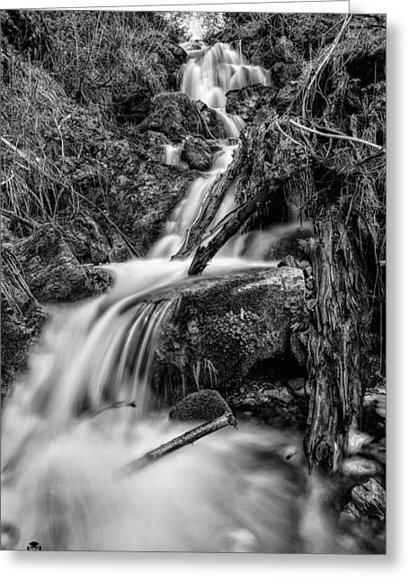 Vertical Falls Bw Greeting Card by Mitch Johanson