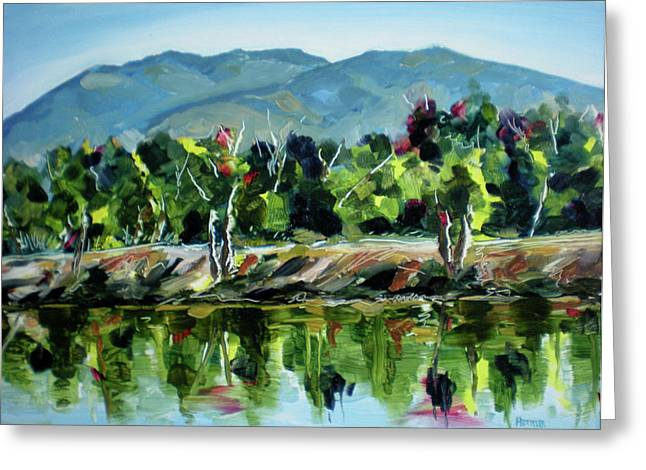 Veterans Park Pond Greeting Card