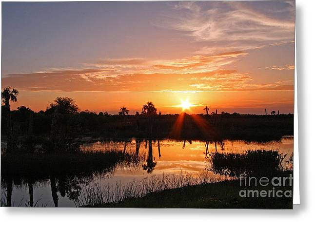 Viera Wetlands Sunset Greeting Card